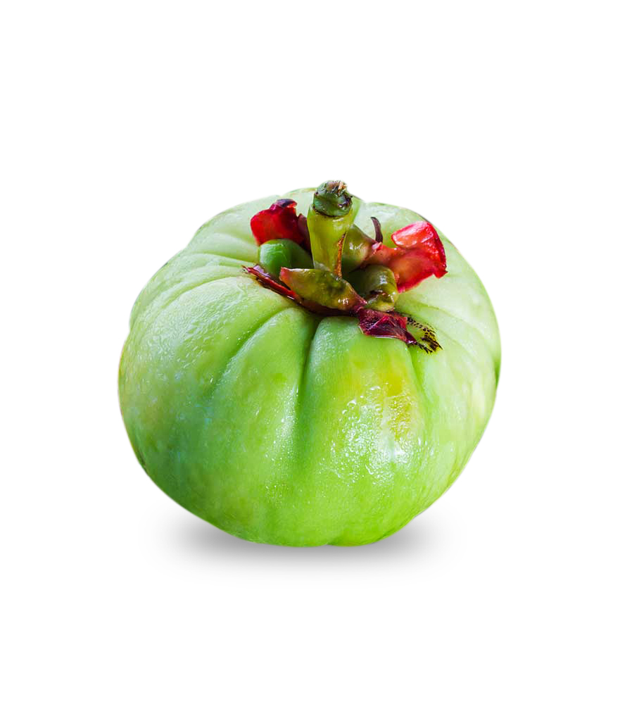 Garcinia Cambogia-One Shot Keto Review